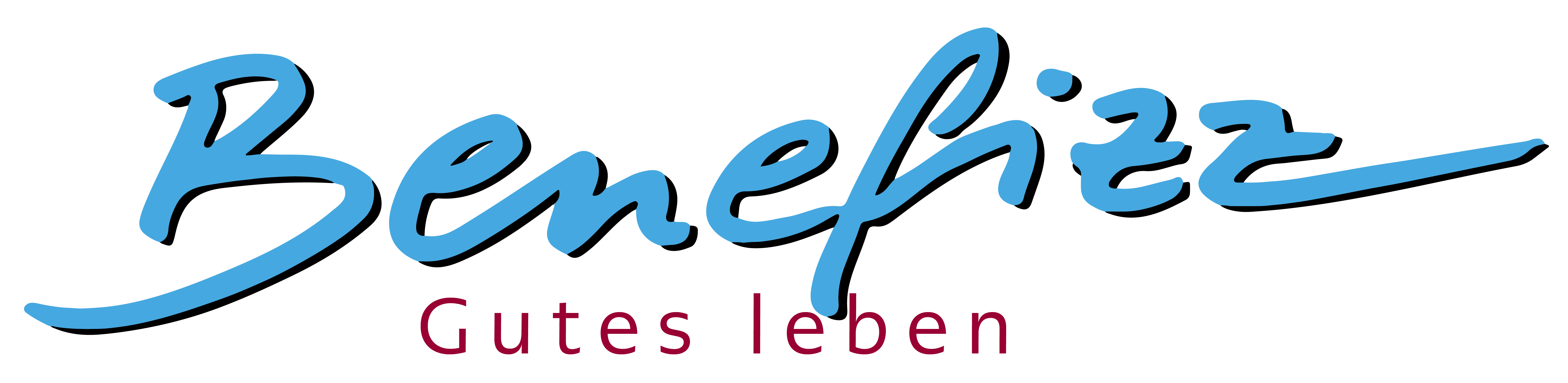 Logo Benefizz